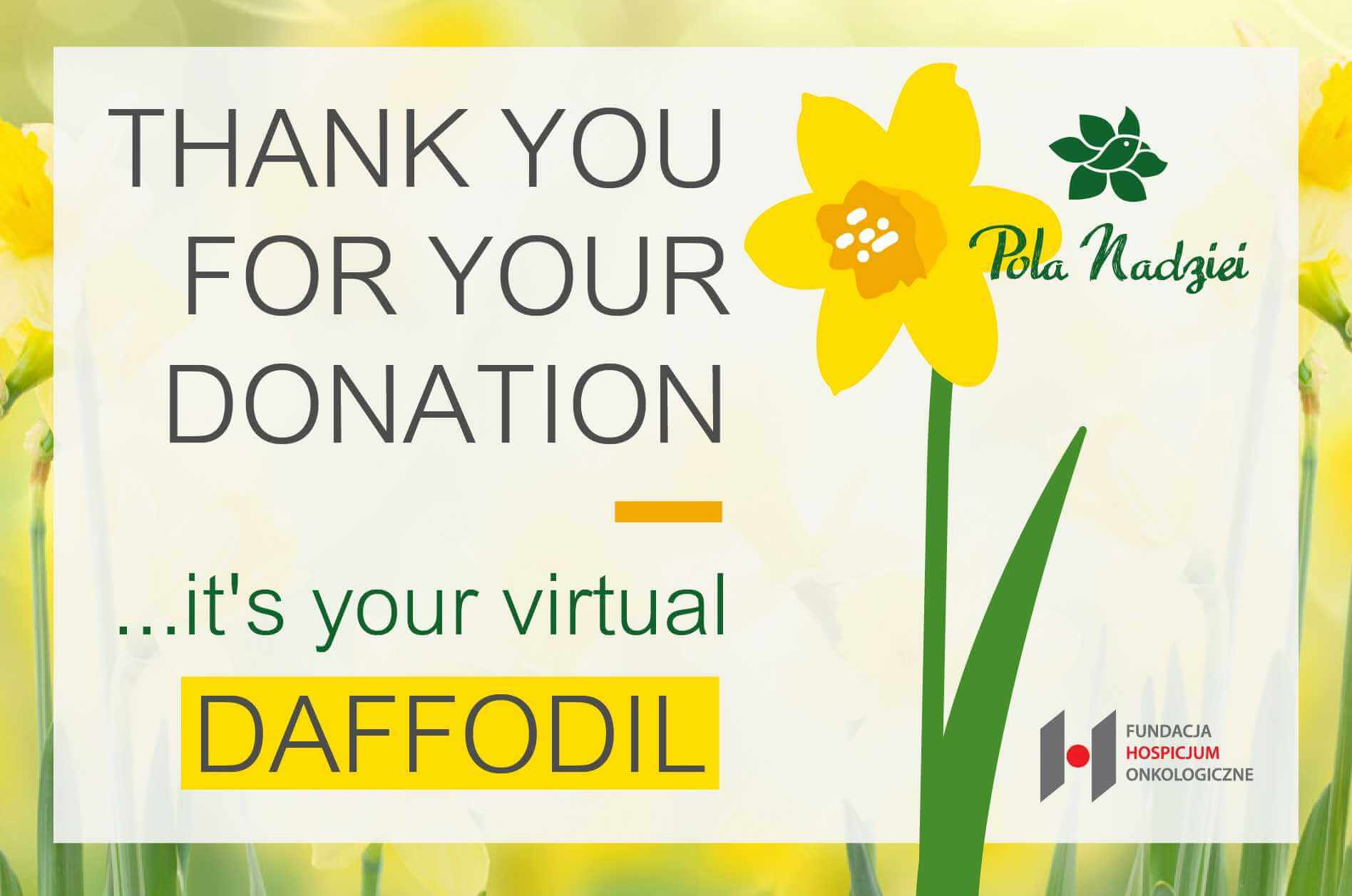 Support Fields of Hope and buy one virtual daffodil! Kup Zonkila! ; 0 ;1000 ;1